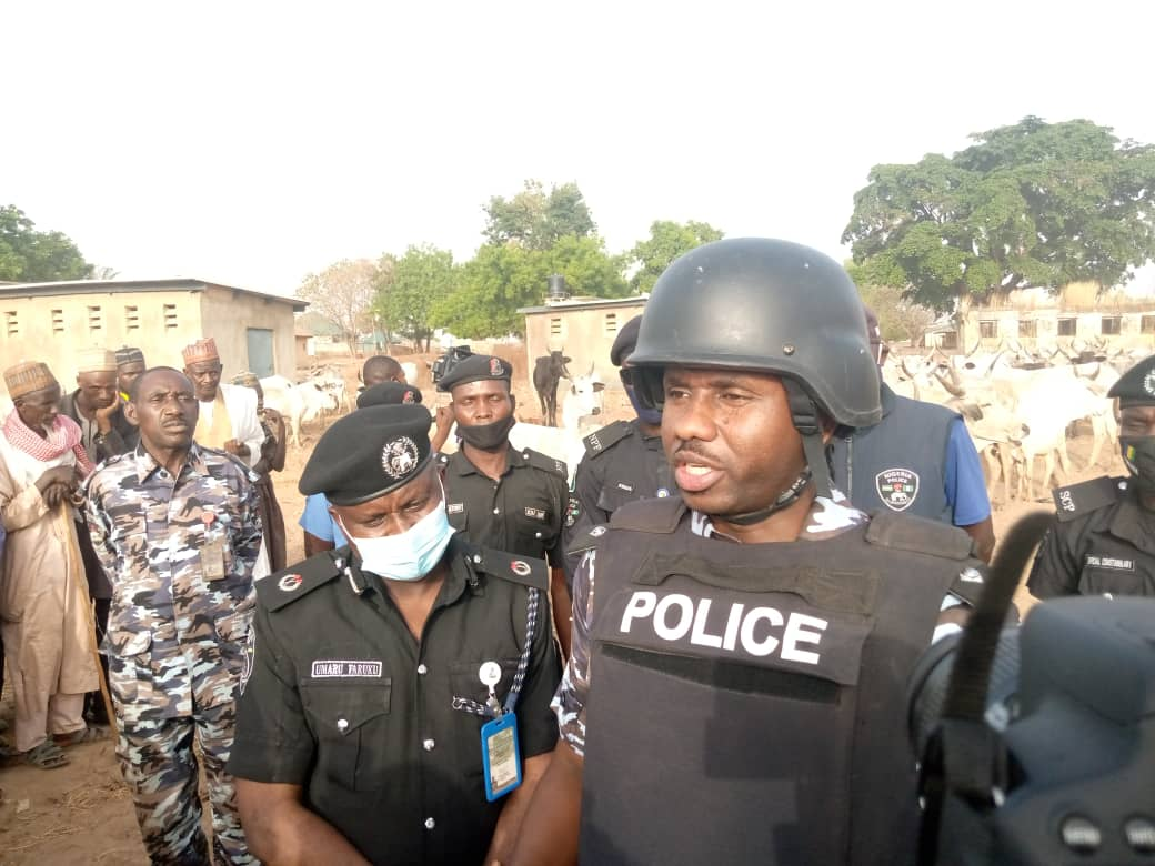 Kaduna State Police Command Arrests Seven Suspected Cattle Rustlers, Recovers 427 Rustled Domestic Animals