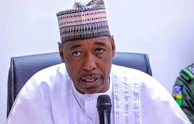 Governor Zulum, approves service elongation of academic staff of tertiary institutions in Borno State