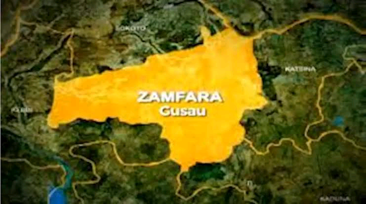 Zamfara state government says disarming the bandits is the main reason of its peace dialogue initiative