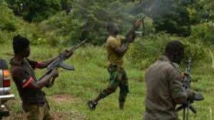Bandits kills nine persons in Niger state