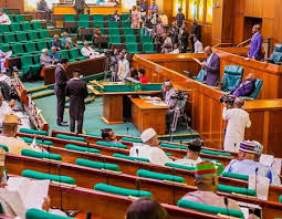 Reps investigate alleged malpractices in diplomatic posting by Ministry of Foreign Affairs