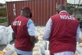NDLEA: 126 jailed for drug trafficking in Plateau, Kano, Ondo, others